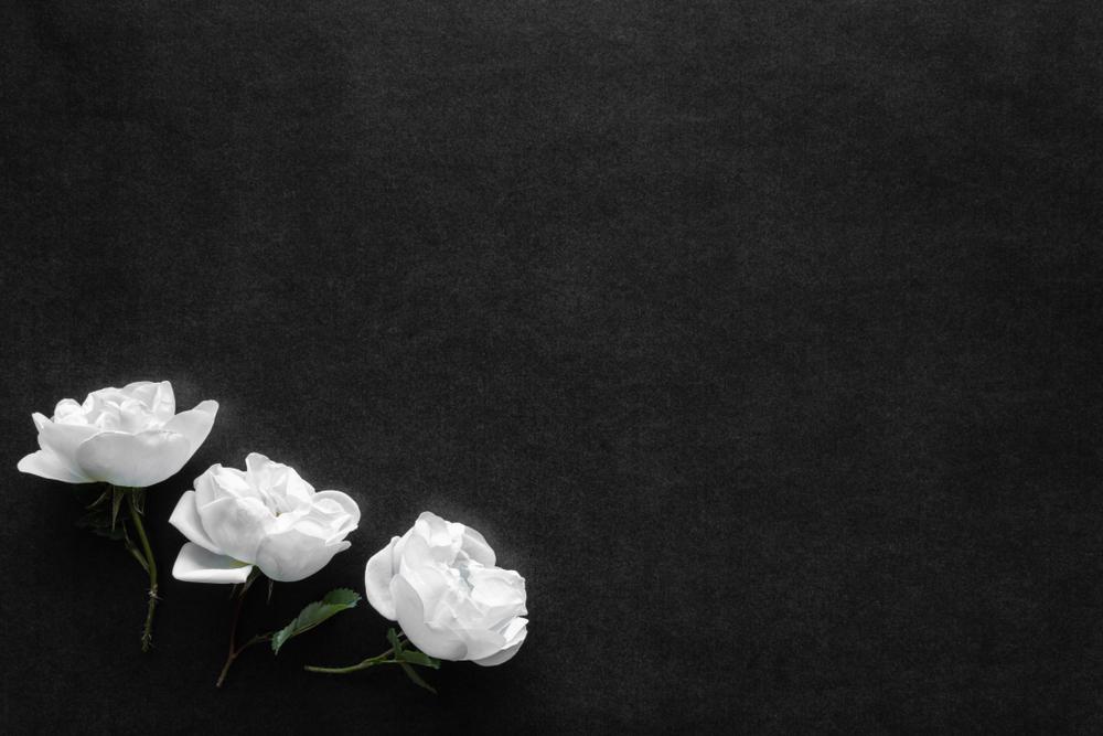Frases De Luto O Que Dizer Nos Momentos Mais Difíceis